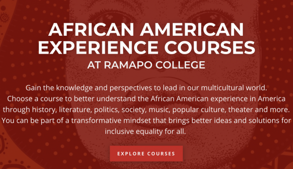 Screenshot of an African American Experience Course Page