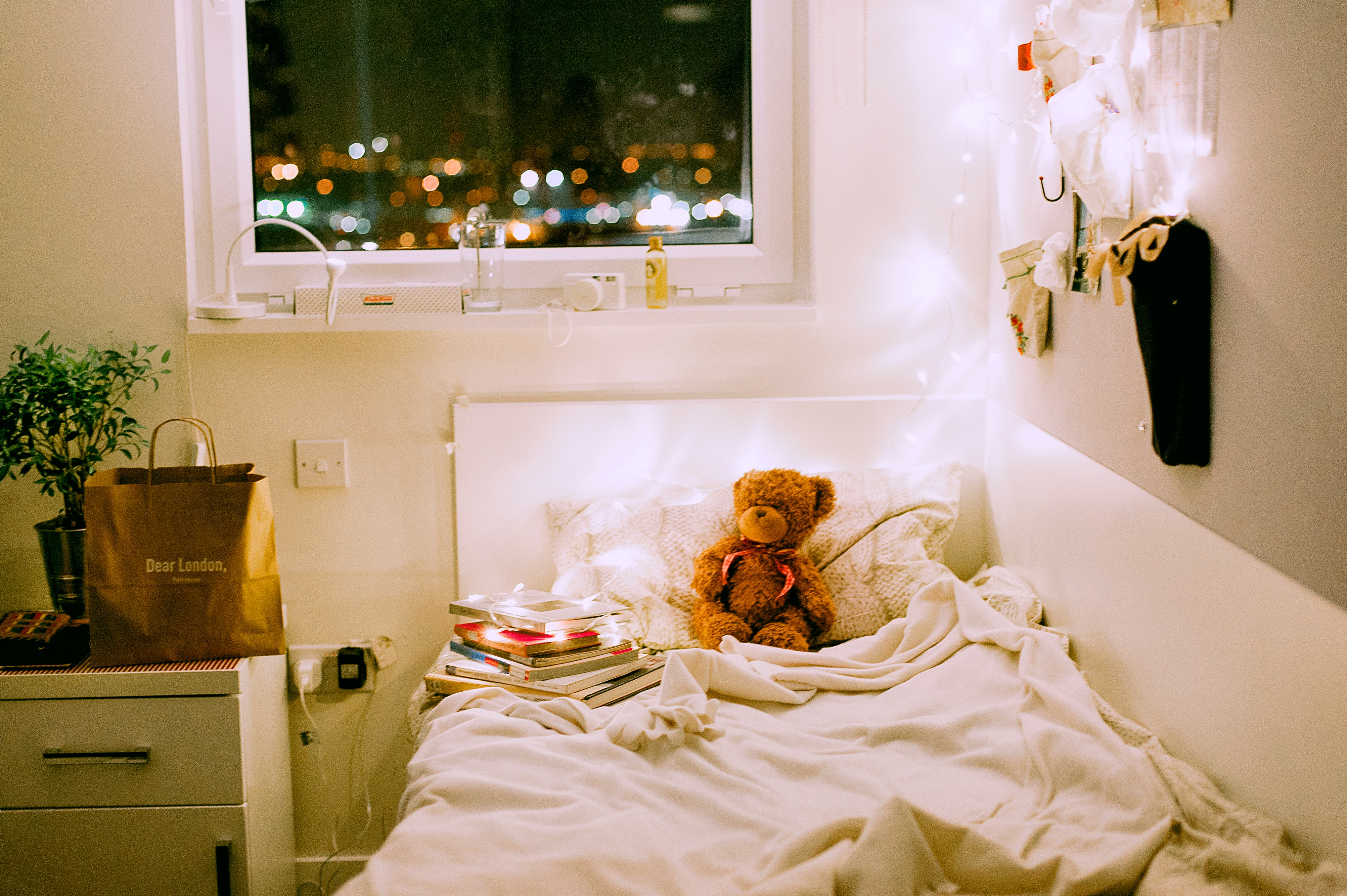 A college or university dorm room with a bed and a teddy bear on it