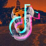 'Fun, Creative, and Simple': How Clemson University Uses TikTok